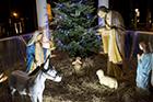 Układ Mszy świętych na Nowy Rok